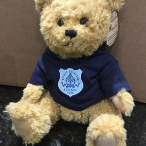 Bishop Bear with Hoody